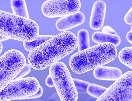 Listeria Outbreak – What Do Food Recalls Mean?